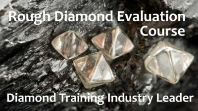 rough-diamond-training-course
