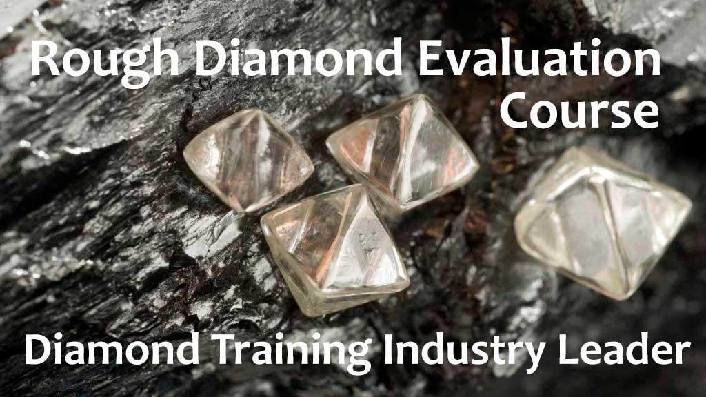 rough-diamond-training-course